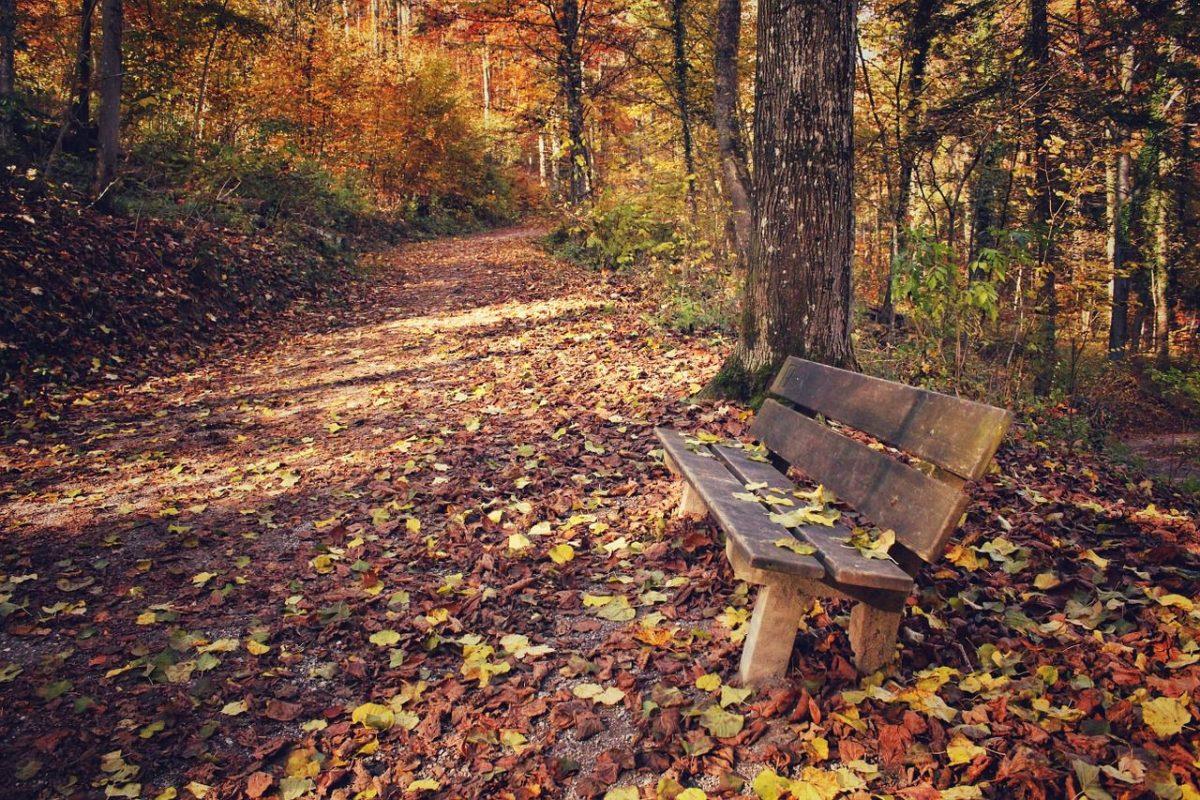 scoprire bergamo in autunno cosa vedere